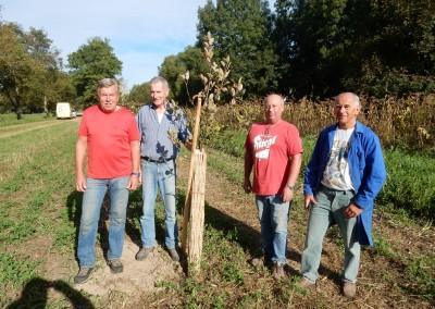 Auspflanzung alter Obstsorten in Absberg